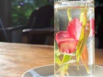 Flor vermelha em um vidro da água Imagem de Stock