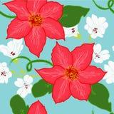 Flor vermelha grande Fotos de Stock