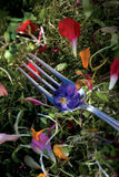 Flor violeta comestível em uma forquilha Fotografia de Stock