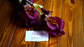 Flor violeta hermosa del iris