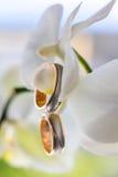 Flor y anillos de bodas Fotos de archivo libres de regalías