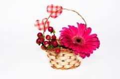 Flor y bayas en la cesta Imagen de archivo