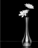 Flor y florero fotografía de archivo libre de regalías
