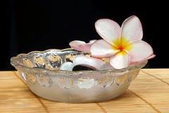 Flor y guijarros de Frangipane en el tazón de fuente de cristal Imagenes de archivo