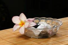 Flor y guijarros de Frangipane en el tazón de fuente de cristal Fotografía de archivo libre de regalías