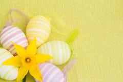 Flor y huevos de Pascua amarillos Imágenes de archivo libres de regalías