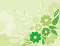 Flor y línea abstractas coloridas verdes fondo grande ilustración del vector