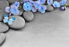 Flor y mariposa azules en el fondo de piedra Imagen de archivo