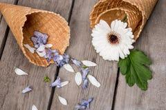 Flor y pétalos hermosos en conos de la oblea en fondo de madera Imagen de archivo libre de regalías