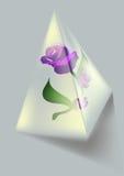 Flor y pirámide Fotos de archivo libres de regalías