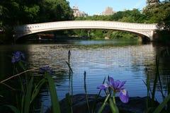 Flor y puente de Central Park Fotos de archivo libres de regalías