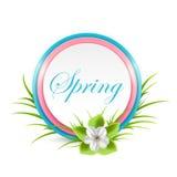 Flor y tarjeta de la primavera Imagen de archivo libre de regalías