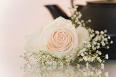 Flor y una tetera en el fondo blanco Foto de archivo libre de regalías