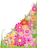 Flora. Beautiful flowers in different colors stock illustration
