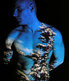 Flora. Projection of Seasons on Human Body stock photos