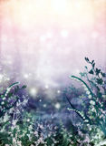 Flora abstract background pattern. A Flora abstract background pattern Stock Image