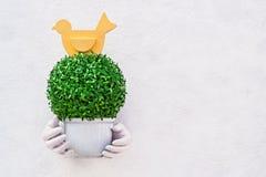 Flora artificial en maceta Fotos de archivo libres de regalías