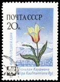 Flora auf Briefmarken stockbilder