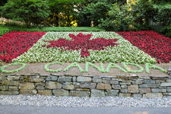 Flora canada flag Royalty Free Stock Images