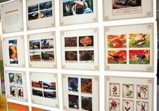 Flora colorida y fauna conmemoradas en sellos Imágenes de archivo libres de regalías