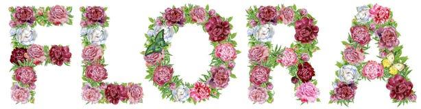 FLORA da palavra de flores da aquarela para a decoração ilustração do vetor