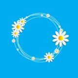 Flora Daisy Design Vector Illustration Imágenes de archivo libres de regalías