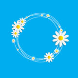 Flora Daisy Design Vector Illustration  Royalty Free Stock Images