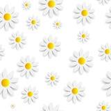 Flora Daisy Seamless Pattern Design Vector Fotografía de archivo libre de regalías
