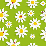 Flora Daisy Seamless Pattern Design Vector Fotos de archivo