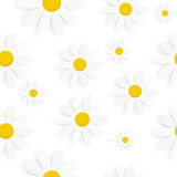 Flora Daisy Seamless Pattern Design Vector Photos libres de droits