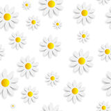 Flora Daisy Seamless Pattern Design Vector Royalty Free Stock Photography