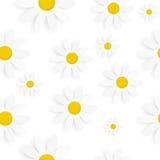 Flora Daisy Seamless Pattern Design Vector Royalty Free Stock Photos