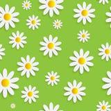 Flora Daisy Seamless Pattern Design Vetora ilustração stock