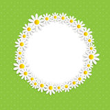 Flora Daisyl Design Vector Illustartion Royaltyfri Fotografi