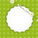 Flora Daisyl Design Vector Illustartion Royaltyfri Bild