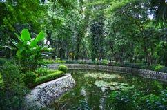 Flora de Taman foto de stock