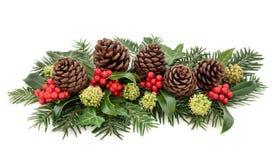 Flora do inverno e decoração do Natal foto de stock