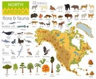 A flora e a fauna de America do Norte traçam, elementos lisos Animais, pássaros ilustração stock