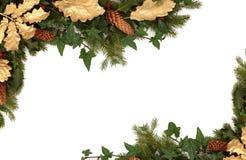 Flora e fauna do inverno Fotografia de Stock Royalty Free