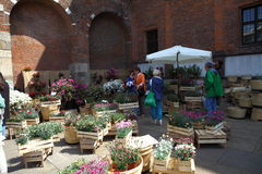 Flora et decora 2017. The Basilica of Sant`Ambrogio, in Milan, reopens its cloisters and gardens to flowers, greenery and everything that fascinates gardening Royalty Free Stock Photo