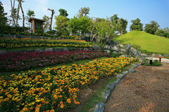 Flora Expo real, Chiang Mai, Tailandia Fotografía de archivo libre de regalías
