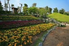 Flora Expo reale, Chiang Mai, Tailandia Fotografia Stock Libera da Diritti