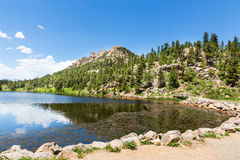Flora and fauna of Rocky Mountain National Park Stock Image