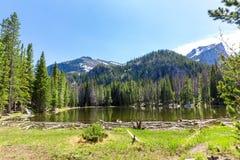 Flora and fauna of Rocky Mountain National Park. Colorado USA Stock Image