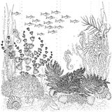 The flora and fauna of the seabed. Colorless coloring Royalty Free Stock Photography