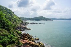 Flora and fauna of the tropical peninsula in the jungle. Gokarna Village, India stock photography