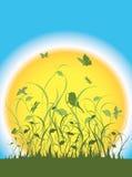 Flora, Fauna und eine große Sonne Lizenzfreie Stockbilder