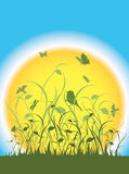 Flora, fauna y un sol grande Imágenes de archivo libres de regalías