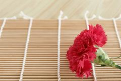 Flora flower bamboo background Stock Photography