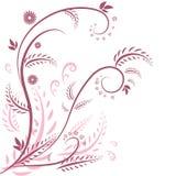 Flora graphic background Stock Photos